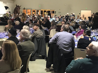 "Santa Rosa Symphony ""Evening in Vienna"" fundraiser crowd"